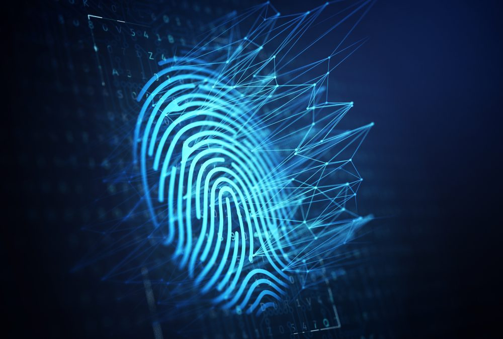 Top 5 Considerations for Airport CEOs When it Comes to Implementing Biometrics