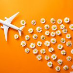 Sustainability in Aviation
